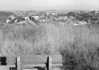 Bench (Debs Park), 2006