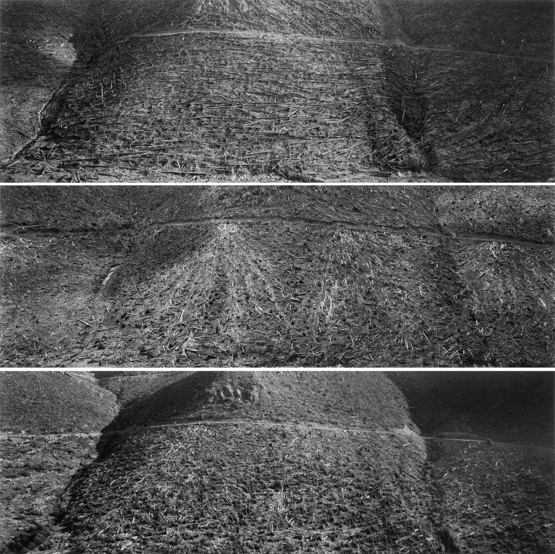 Frank Gohlke, Mount Saint Helens