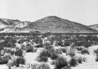 Isolated House #3, (High Desert), 1990/92 19″x19″ B&W Photograph