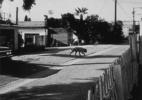 Stray Dog #2, ( Los Angeles), 1990/92 19″x19″ B&W Photograph