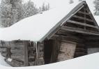 cabin_01