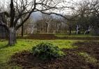 Bei-Lascaux-Bluhende-Pfirsichbaume-Montignac-Dordogne-2009