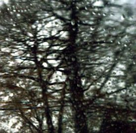 Shirley Irons, Paintings, Photo Landscapes