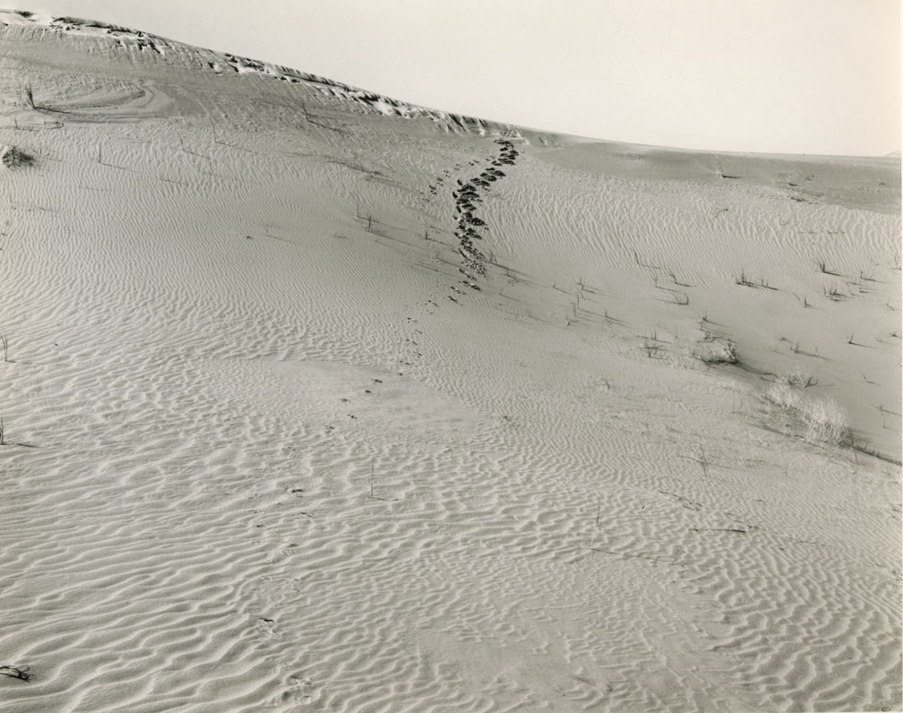 Large sloping sand dune with dog foot prints, Mark Ruwedel, Pictures of Hell