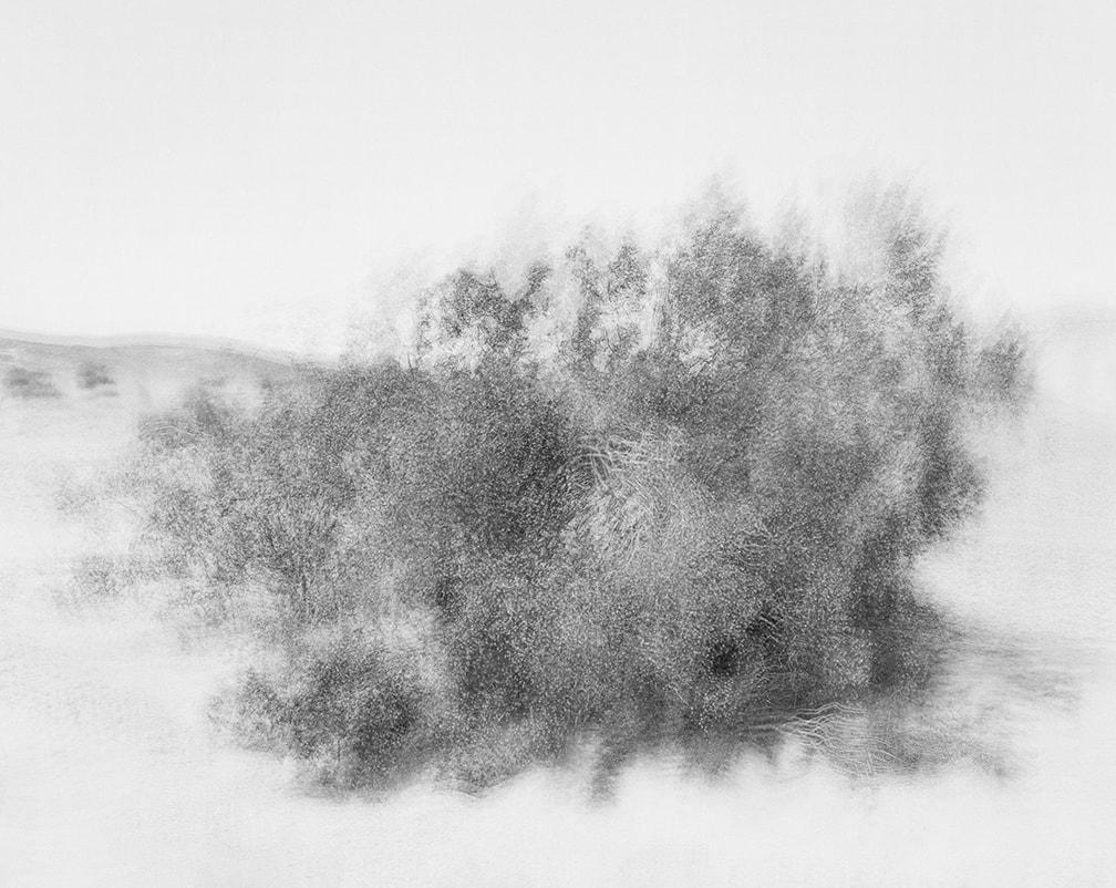 _Wind #1,2014 (24 x 30)