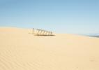 Ladder on Dune