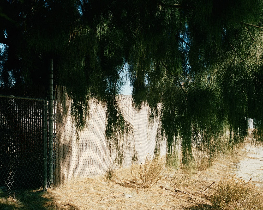 Ron Jude, Fence w/ Deep Shade