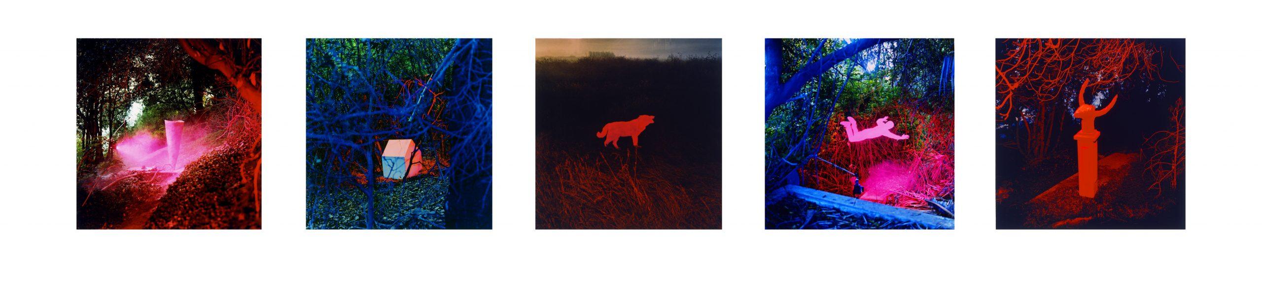 Five_Print_Portfolio